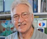 Professor Stephen Crain